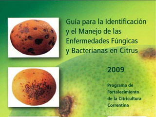 Guía para la Identificación y el Manejo de las Enfermedades Fúngicas y Bacterianas en Citrus (Guide to the Identification and Management of Fungal and Bacterial Diseases in Citrus)