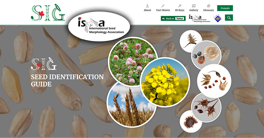 Home page of Seed Identification Guide (SIG) shown with ISMA logo